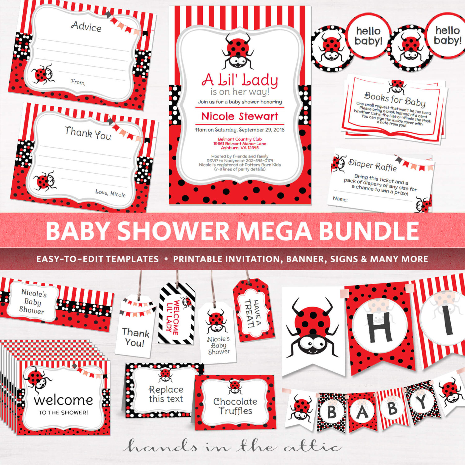 Image for Lady Bug Baby Shower Package