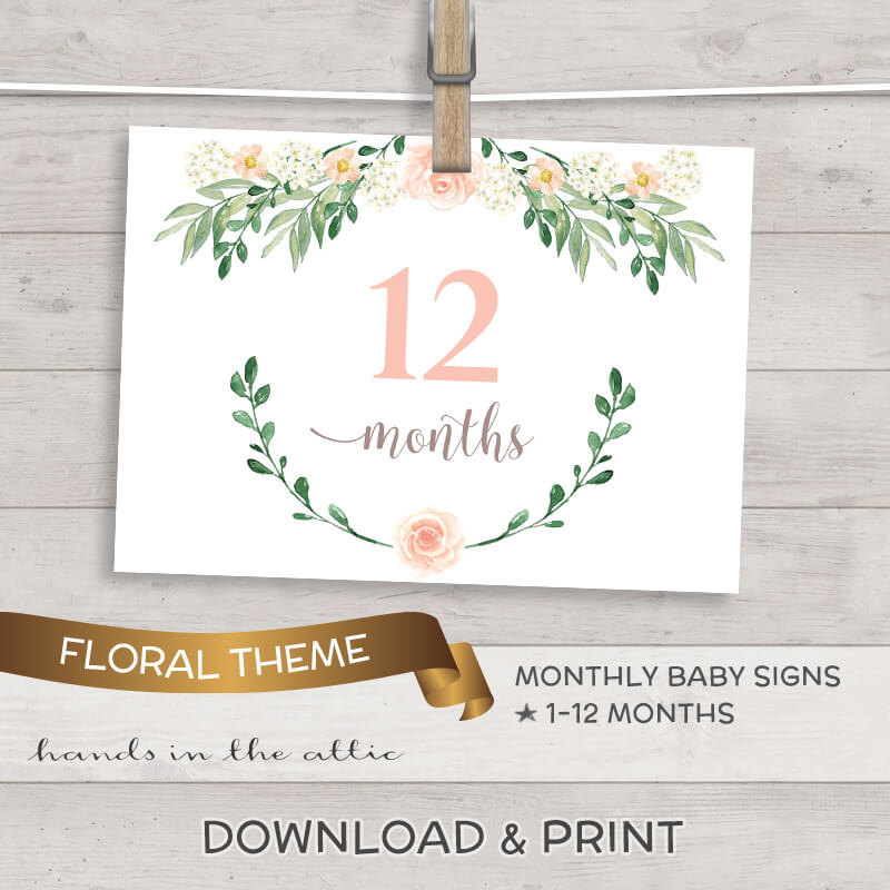 Image for Baby Girl Monthly Milestones