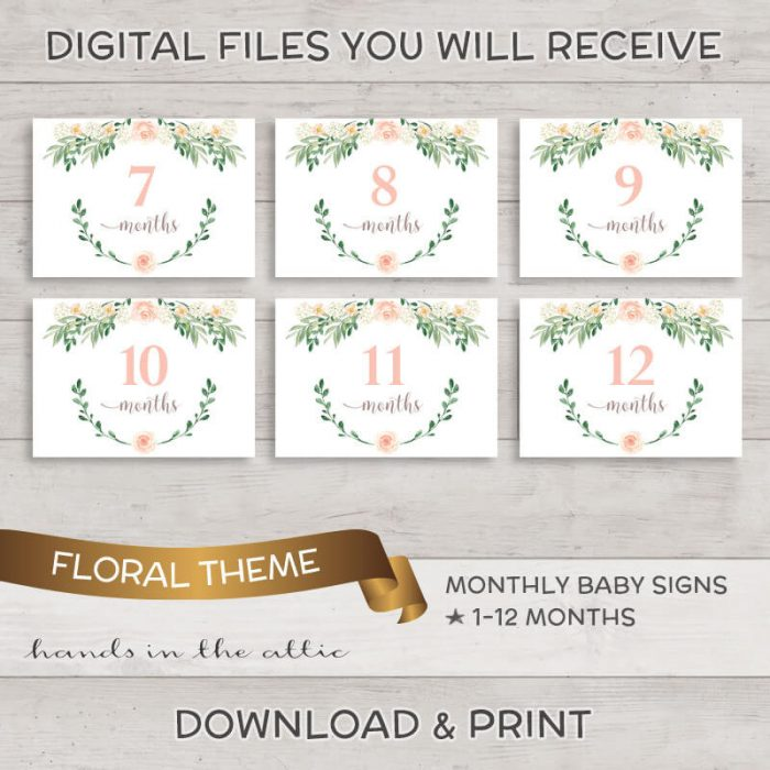 Image for Pink Rose Floral Monthly Baby Milestones