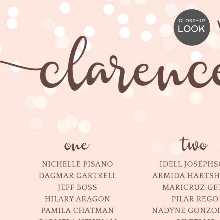 Image for Blush Pink with Confetti Wedding Seating Chart