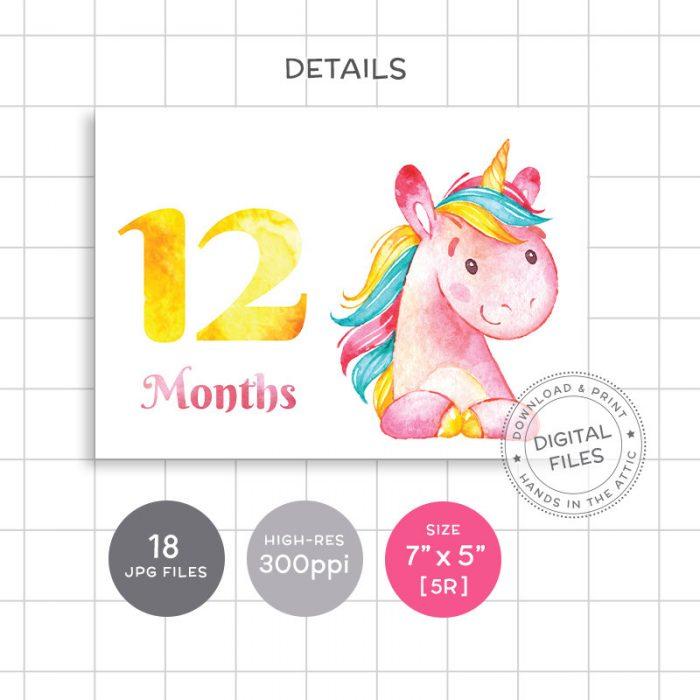 Image for Pink Unicorn Monthly Baby Milestones