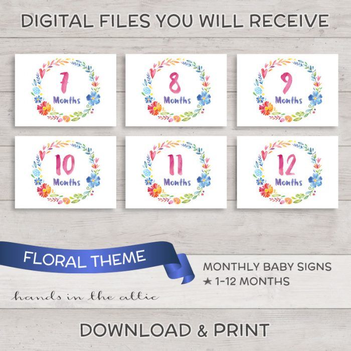 Image for Floral Theme Monthly Baby Milestones