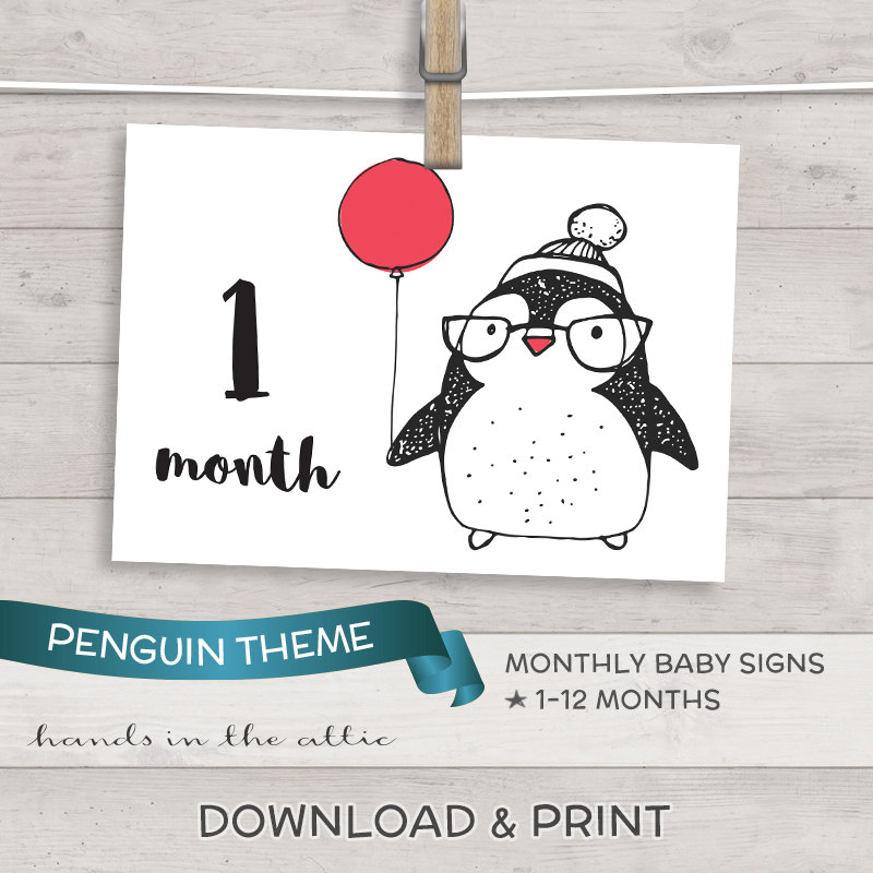Image for Printable Penguin Signs