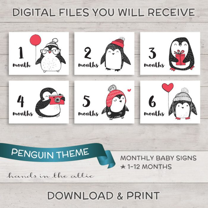 Image for Penguin Monthly Baby Milestones