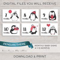 Image for Penguin Monthly Baby Milestones