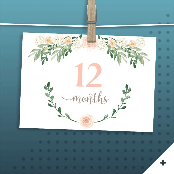 Monthly Baby Milestones