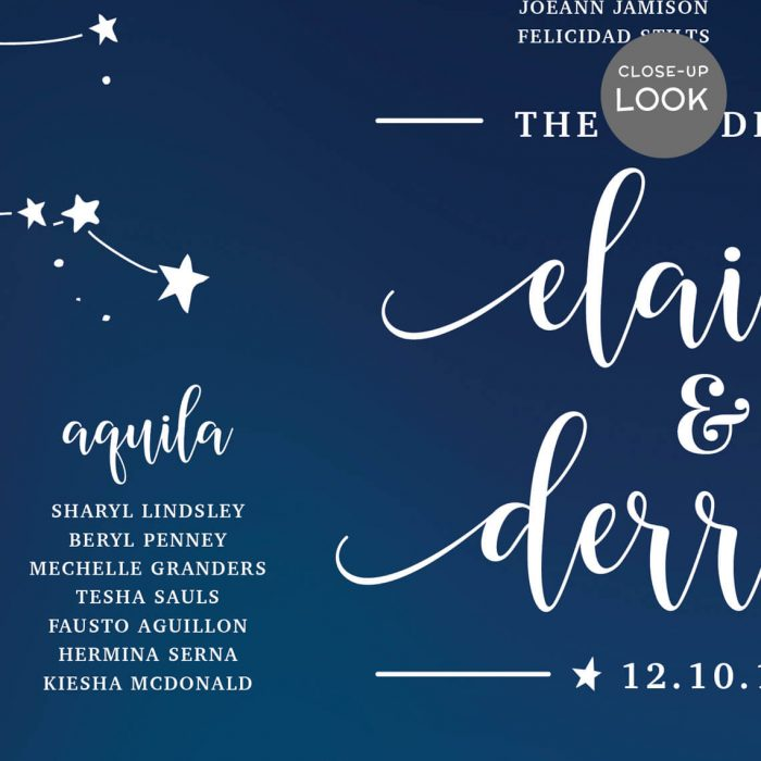 Constellation Stars Wedding Seating Chart